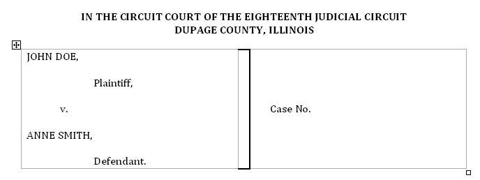 What Is A Case Caption 2
